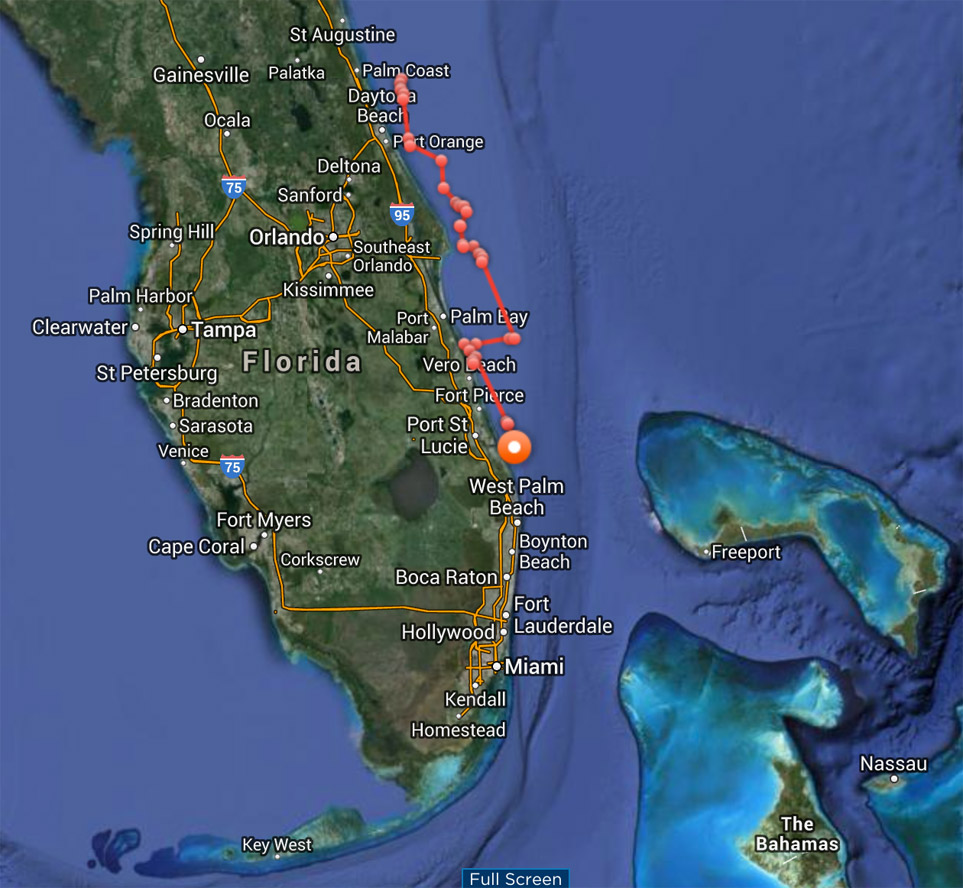 White Shark Attacks FL Diver, Another GW Heads For S